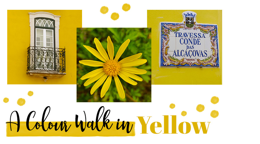 A colour walk in yellow